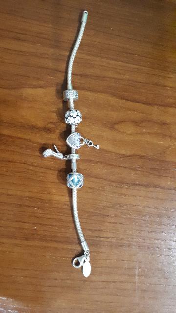 Шармы серебрянный