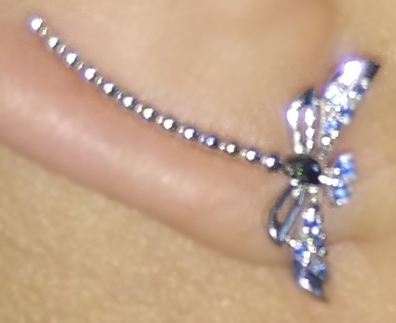 Серебряные стрекозы