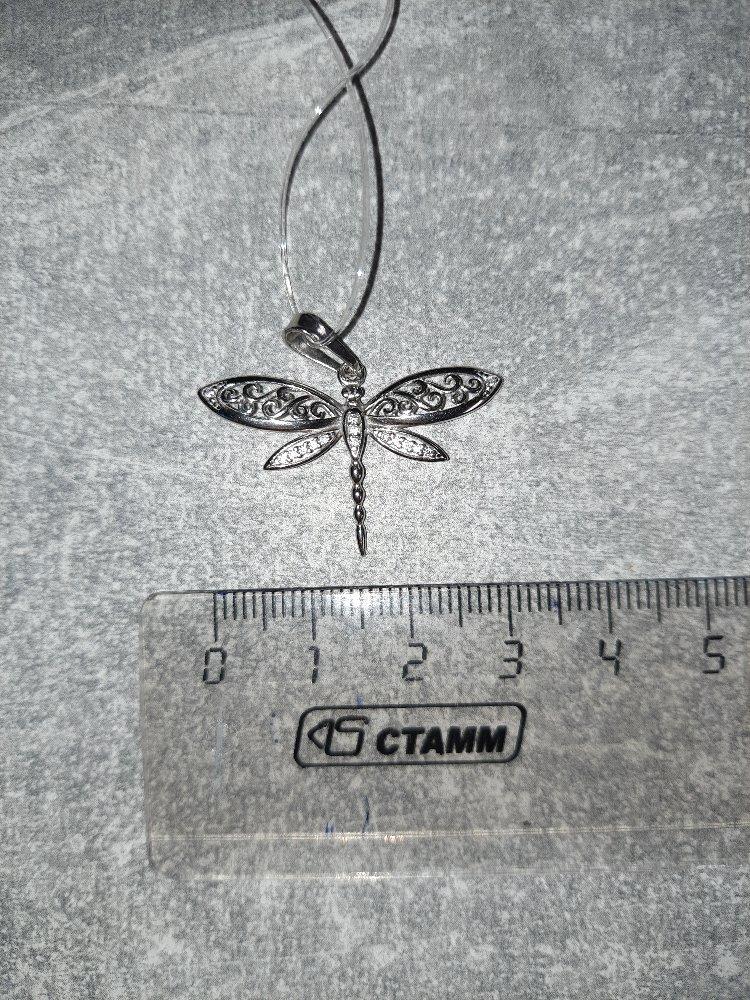 Стрекозка серебрянная