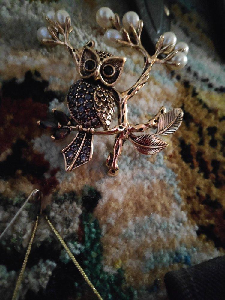 Чудо сова, изящная, красивая