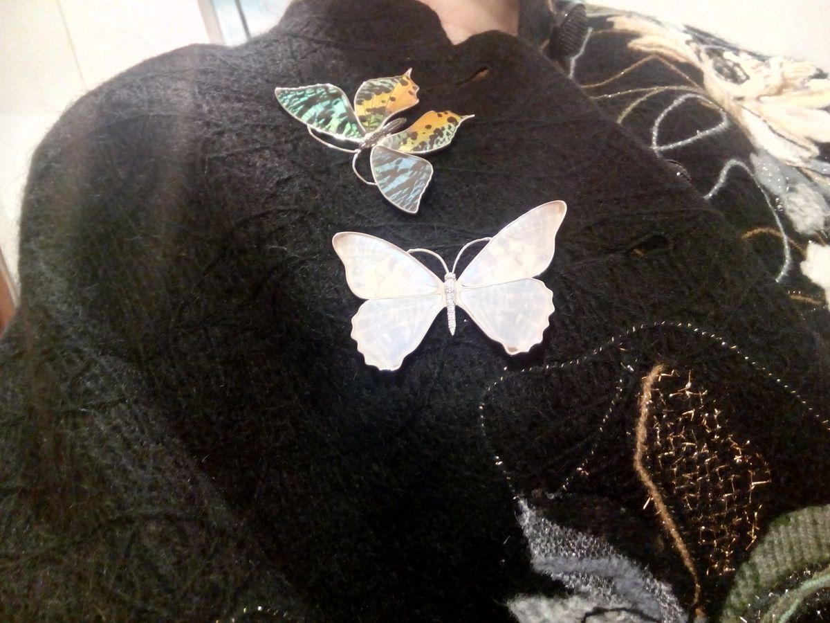 Супер-бабочка!