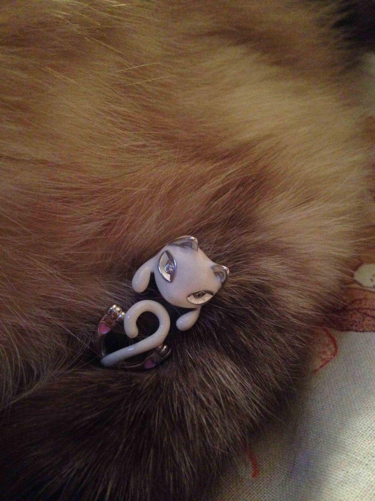 Кольцо- котяра